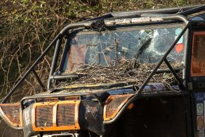 All cars were covered in thorny twigs and branches.