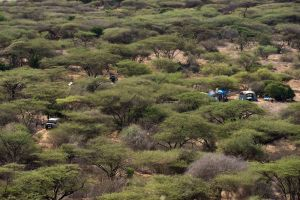 The view from a nearby hill overlooking our campsite and the Rhino Charge area.